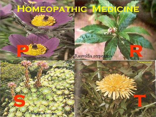 Homeopathic Medicine - P - T