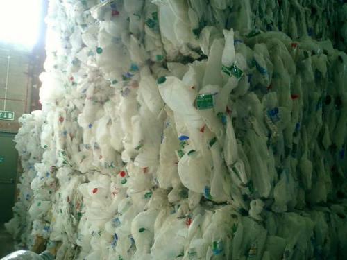 HDPE Milk Bottle Scrap