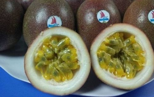 Nutritious And Tasty Passion Fruit