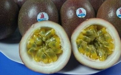 Nutritious And Tasty Passion Fruit Certifications: Haccp