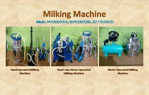 Automatic Dairy Milking Machines