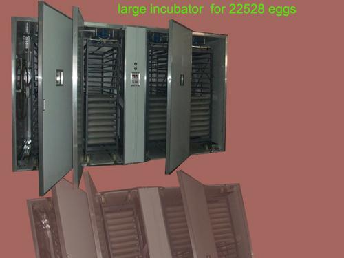 Large Egg Incubators