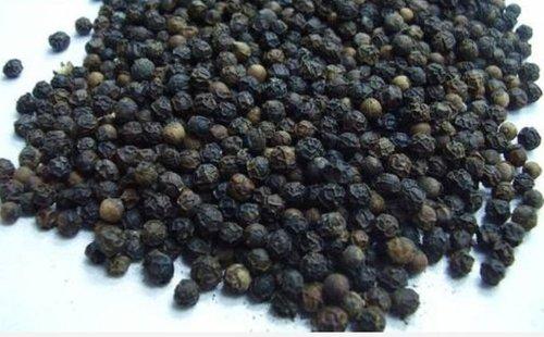 Top Quality Fresh Black Pepper