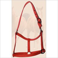 Red Color PP Halter With Buckles