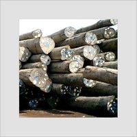 African Teak Wood Timber