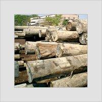 Malaysian Kapur Wood Timber