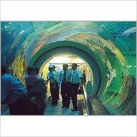 High Clarity Glass Marine Aquariums