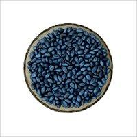 Seed Coat Blue