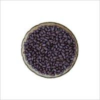 Seed Coat Violet
