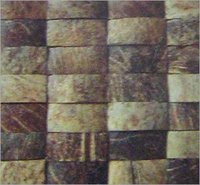 EXOTIC NATURAL ROUGH LINEAR DESIGN SHELL PANEL