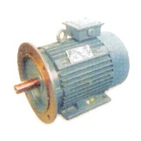 High Speed Induction Motors