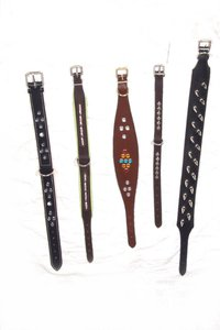 Leather Whippet Dog Collar With Different Fitting And Studds On Top