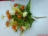 10 Carnation Dual Color Flower