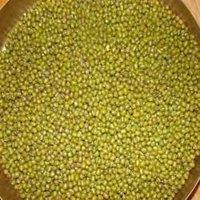 Moong Sabut (Mung Bean)