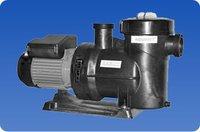 Dual Speed Energy Saving Pump