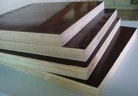 Film Plywood