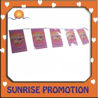 Party Bunting Flag
