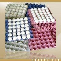 White Shell Eggs