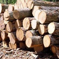 Imported Timber