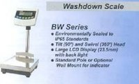 Washdown Platform Scale