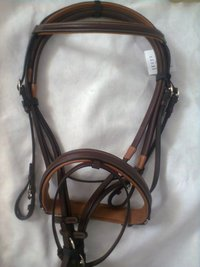 Dressage Bridle
