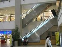 Reliable Escalator Glass Cladding