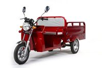 Electronic Tricycle (LM-S009)