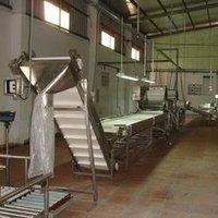 Automatic Fruit Processing Line
