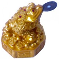 Feng Shui Toad- Golden Colour