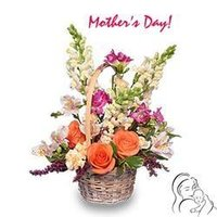 Charming Flower Baskets