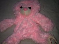 Skin Teddy Soft Toy