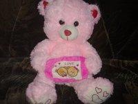 Fancy Washable Medium Soft Teddy Toy