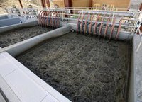 Waste Treatment And Disposal System