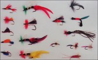 Assorted Fishing Fly Hooks