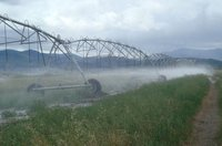 Tape Micro Water Irrigation System