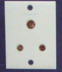 6 Amp. 3 Pin Socket