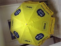 Customized Promotional Umbrellas