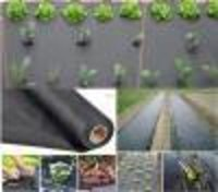 Non Woven Weed Mat