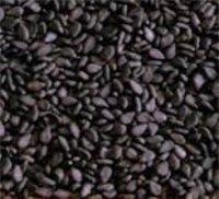 Black Seasame Seeds