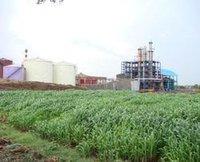 Distillery Sugar Plant