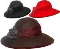 Designer Ladies Hat
