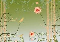 Display Wallpaper