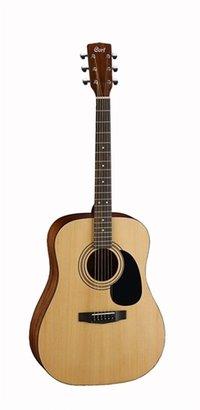 Acoustic Guitars (CORT AD 810)