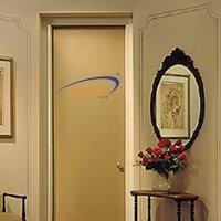 Swarnim Flush Door