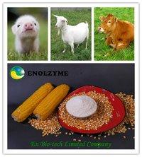 Feed Enzyme Additive Alpha-Galactosidase 2 000U/g