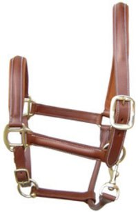Leather Halters