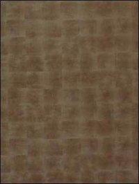 Sg Glass- Luxury Bronze Design Sheet