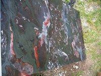Banded Taconite Stone