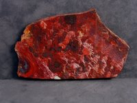 Blood Red Jasper Stone