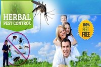 Herbal Pest Control Service
